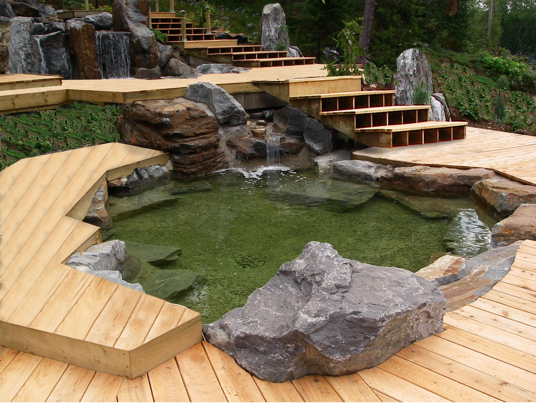 Bassin Aquatique Japonais Aulnay Sous Bois 2216