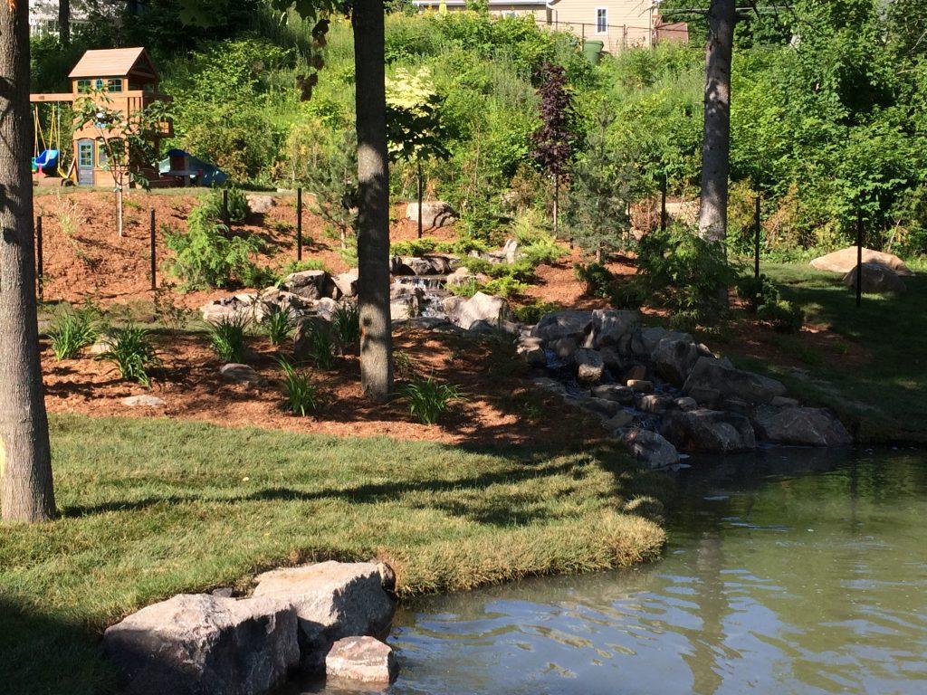Bassin De Baignade Autoconstruction jardin de baignade : la plaisir de la baignade au naturel  