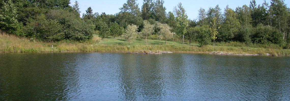 Protection et habitat du poisson